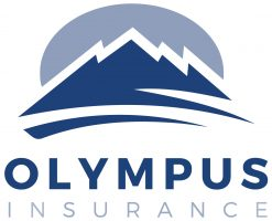 olympus, homeowners insurance, top insurance company, florida